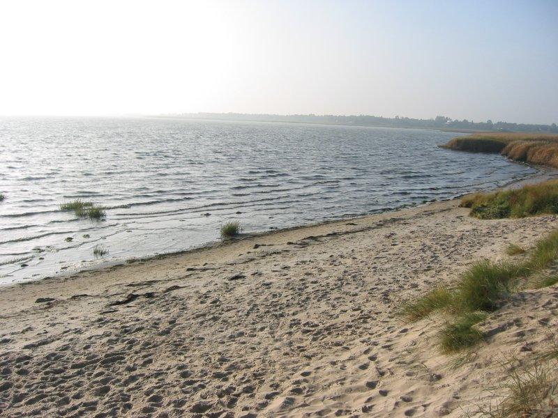Vadehavet 300 M