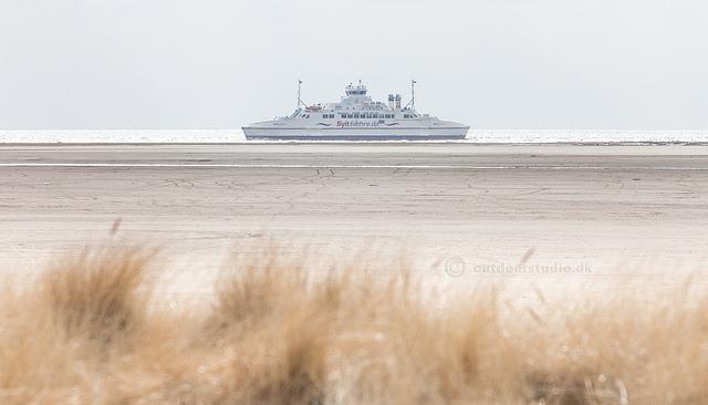 Rømø-Sild færgen